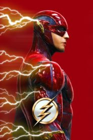 Flash – Flashpoint