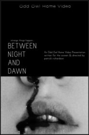 Between Night And Dawn